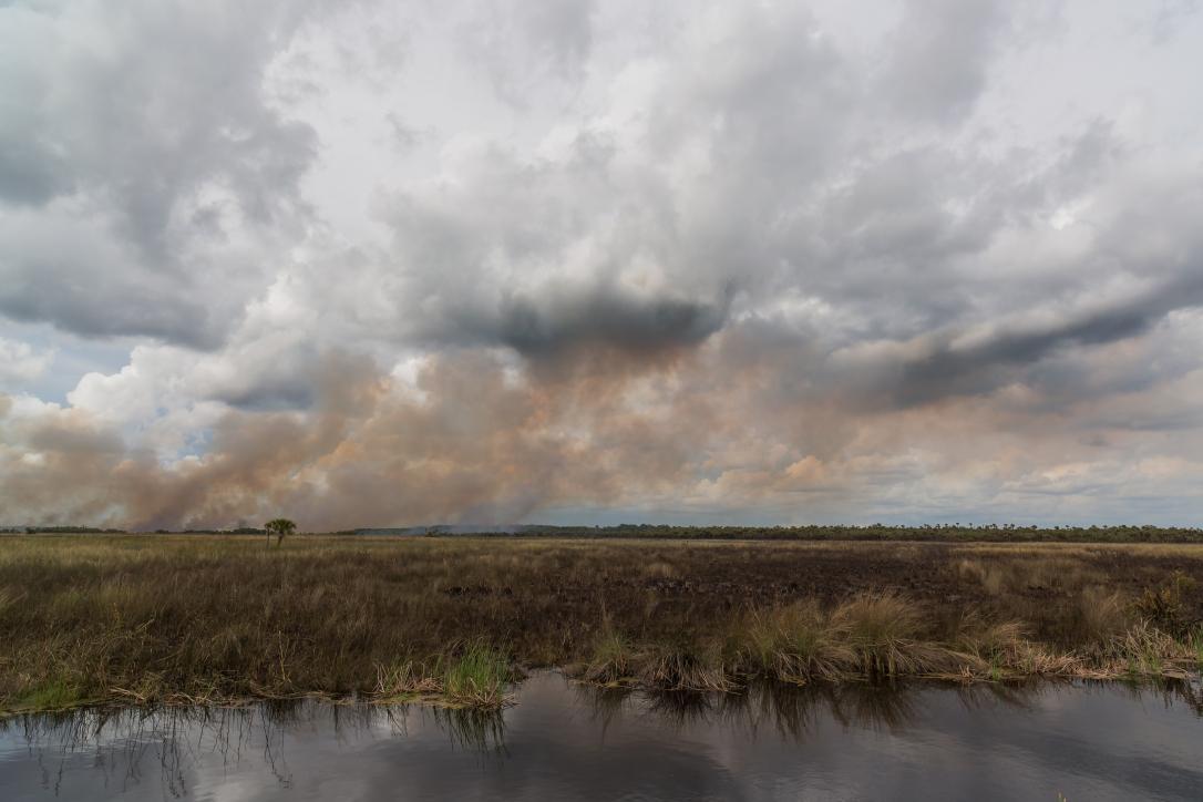Everglades-Fire.jpg